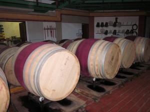 Red Wines Maturing in Oak